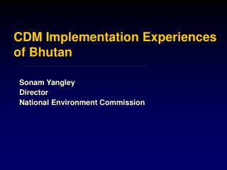 CDM Implementation Experiences of Bhutan