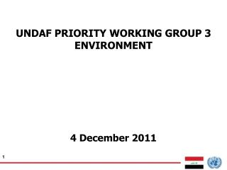 UNDAF PRIORITY WORKING GROUP 3 ENVIRONMENT