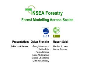 INSEA Forestry  Forest Modelling Across Scales