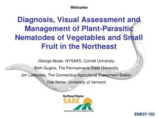 Diagnosis, Visual Assessment and Management of Plant-Parasitic Nematodes of Vegetables and Small Fruit in the Northeast