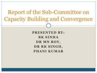 Report of the Sub-Committee on Capacity Building and Convergence
