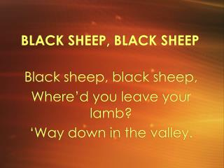 BLACK SHEEP, BLACK SHEEP