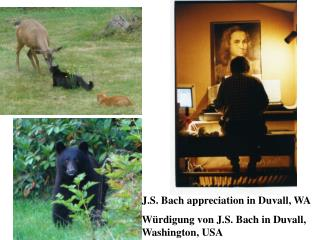 J.S. Bach appreciation in Duvall, WA W rdigung von J.S. Bach in Duvall, Washington, USA