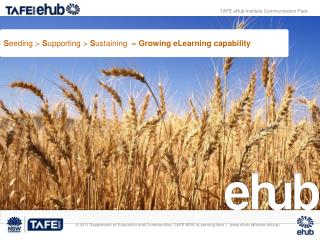 S eeding >  S upporting >  S ustaining   =  G rowing eLearning capability