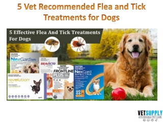 5 Vet Recommended Flea and Tick Treatment for Dogs   Dog Supplies   VetSupply