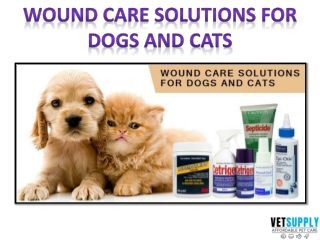 Wound care solutions for dogs and cats   Pet Care   Pet Supplies   VetSupply