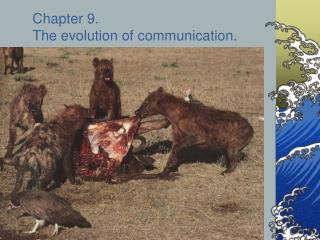 Chapter 9.   The evolution of communication.