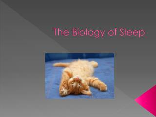 The Biology of Sleep