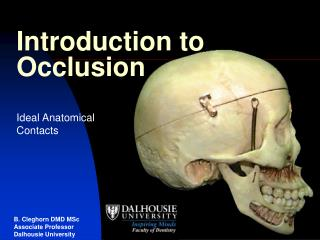 Introduction to Occlusion