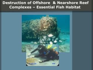 Destruction of Offshore & Nearshore Reef Complexes – Essential Fish Habitat