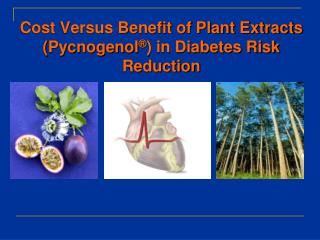 Cost Versus Benefit of Plant Extracts ( Pycnogenol ® ) in Diabetes Risk Reduction