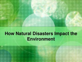 How Natural Disasters Impact the Environment