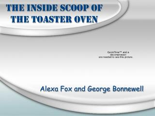 The Inside Scoop of the Toaster Oven