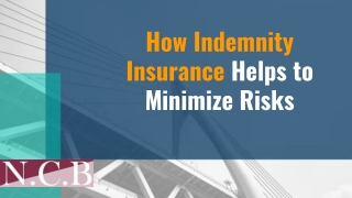How Indemnity Insurance Helps to Minimize Risks