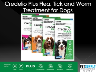 Credelio Plus Flea, Tick, and Worm Treatment for Dogs  Dog Supplies   VetSupply