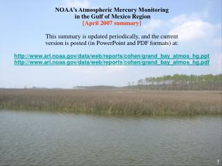 NOAA s Atmospheric Mercury Monitoring  in the Gulf of Mexico Region  [April 2007 summary]  This summary is updated perio