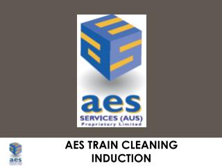 AES TRAIN CLEANING INDUCTION