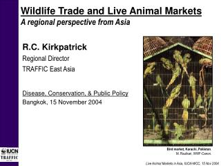 Wildlife Trade and Live Animal Markets A regional perspective from Asia