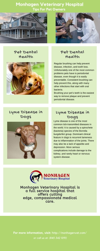 Pet Care - Tips For Pet Owners