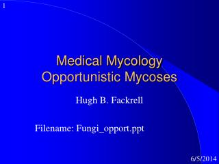 Medical Mycology Opportunistic Mycoses