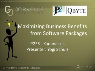 Maximizing Business Benefits       from Software Packages