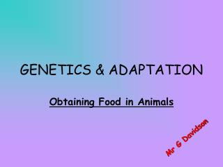 GENETICS  ADAPTATION