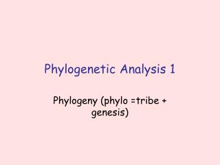 Phylogenetic Analysis 1