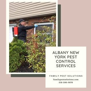 Albany New York Pest Control Services