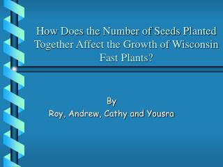 How Does the Number of Seeds Planted Together Affect the Growth of Wisconsin Fast Plants?