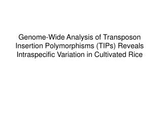 Genome-Wide Analysis of Transposon Insertion Polymorphisms TIPs Reveals Intraspecific Variation in Cultivated Rice