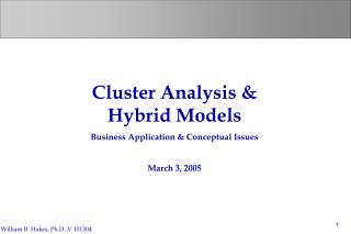 Cluster Analysis & Hybrid Models Business Application & Conceptual Issues March 3, 2005