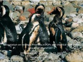 POPs thematic area of GEF SGP