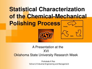 Statistical Characterization of the Chemical-Mechanical Polishing Process