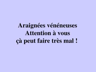 Araign es v n neuses Attention   vous    peut faire tr s mal