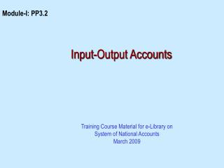 Input-Output Accounts