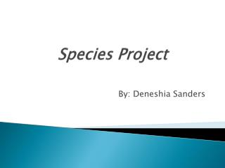 Species Project