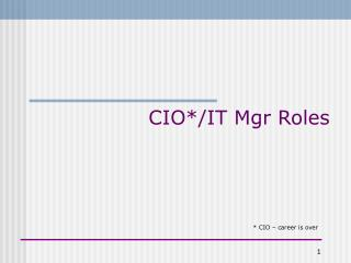 CIO*/IT Mgr Roles