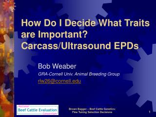 How Do I Decide What Traits are Important?  Carcass/Ultrasound EPDs