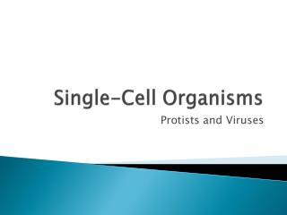 Single-Cell Organisms