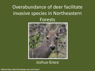 Overabundance of deer facilitate invasive species in Northeastern Forests