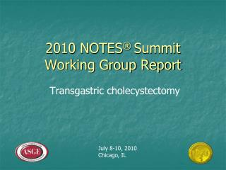 2010 NOTES  Summit Working Group Report