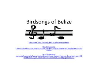 Birdsongs of Belize