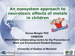 An ecosystem approach to neurotoxic effects of metals in children