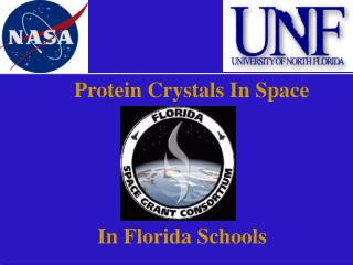Protein Crystals In Space