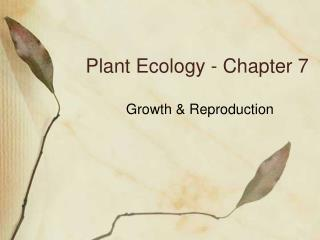 Plant Ecology - Chapter 7