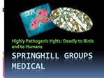 Springhill Groups on Highly Pathogenic H5N1: Deadly to Birds