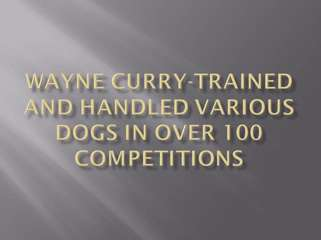 Wayne Curry - Owner