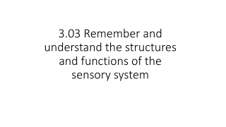 3.03 Remember and understand the structures and functions of the sensory system