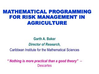 MATHEMATICAL PROGRAMMING FOR RISK MANAGEMENT IN AGRICULTURE