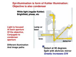 Epi-illumination is form of Kohler Illumination: Objective is also condenser